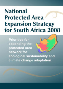 2008NPAE_StrategyCover
