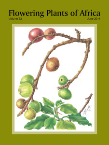 FPA62Cover