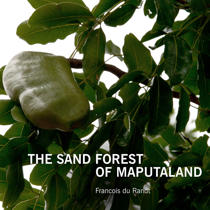 2018_Sand_Forest_of_Maputland_Cover